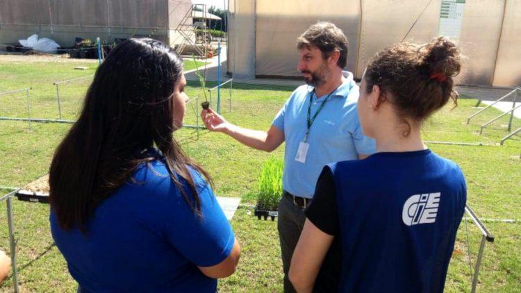 Programa Aprendiz no Agronegócio do CIEE conquista a marca de mil jovens