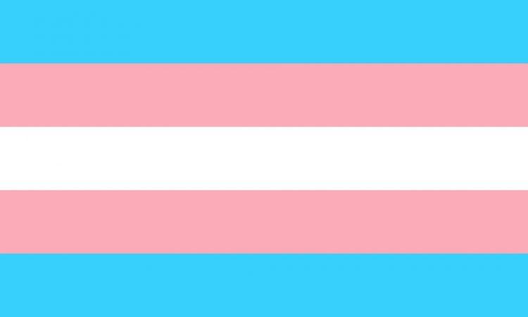 Na foto, a bandeira do orgulho trans. A bandeira é composta por cinco linhas: uma azul, uma rosa, uma branca, uma rosa e outra azul, uma abaixo da outra. Neste mês, há vagas para pessoas trans na Diageo