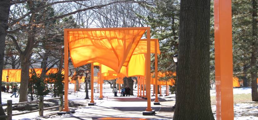 Instalação de bandeiras laranja em espaço de floresta; Instituto Tomie Ohtake oferta vários cursos online
